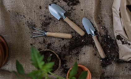 Gardens-featuredimg.jpg
